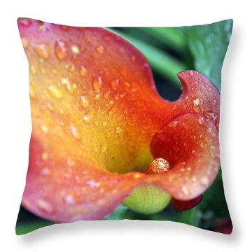 Calla Lily Throw Pillow by Jim Brage
