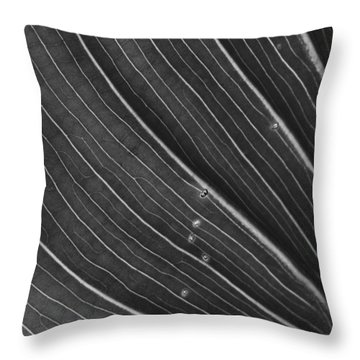 Calla Lily Leaf Throw Pillow