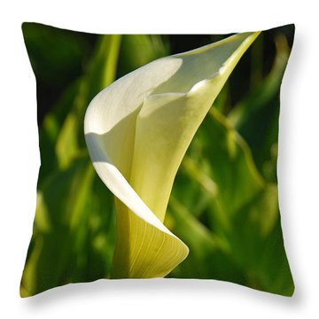 Calla Lily Throw Pillow by Mary Carol Story