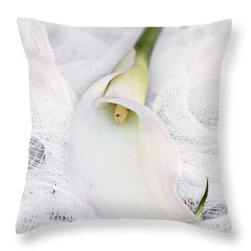 Calla Lily On White Background Throw Pillow