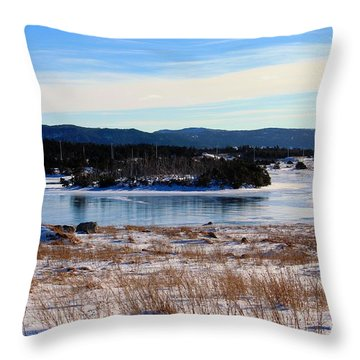 Calling All Skaters Throw Pillow by Barbara Griffin