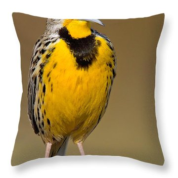 Throw Pillow featuring the photograph Calling Eastern Meadowlark by Jerry Fornarotto