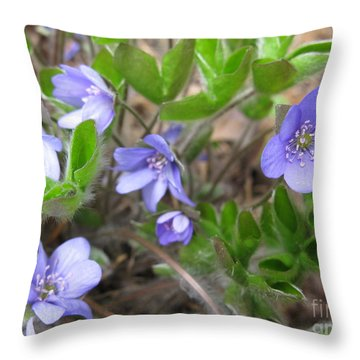 Calling Spring Throw Pillow by Ausra Huntington nee Paulauskaite
