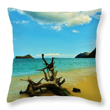 Calm And Quiet Morning  Throw Pillow