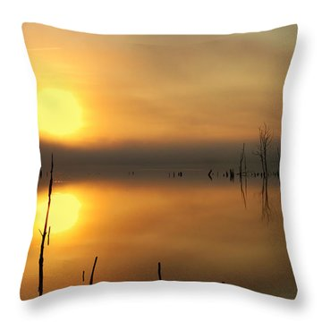 Calm At Dawn Throw Pillow by Roger Becker