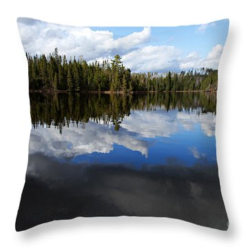 Calm Before The Storm Throw Pillow by Larry Ricker