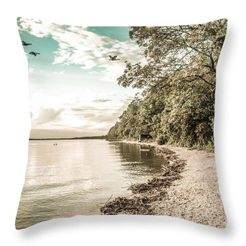 Calm Lake - Future Throw Pillow by Hannes Cmarits