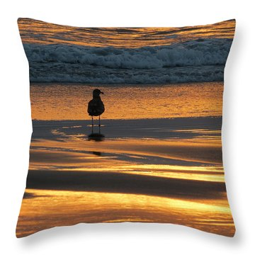 Throw Pillow featuring the photograph Calm by Ramona Johnston