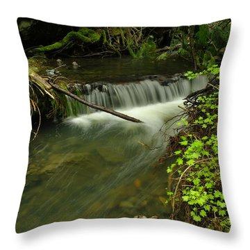 Calm Rapids Throw Pillow by Jeff Swan