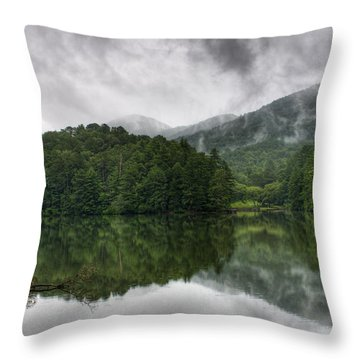 Calm Waters Throw Pillow by Rebecca Hiatt