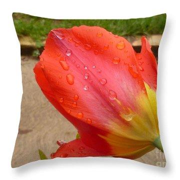 Calming After The Rain Throw Pillow by Lingfai Leung