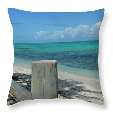 Calming Waters Throw Pillow by Judy Wolinsky