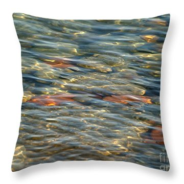 Calming Waters Throw Pillow by Susan  Dimitrakopoulos