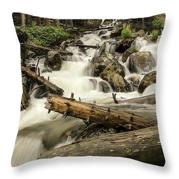 Calypso Cascades Throw Pillow
