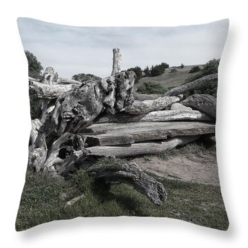 Cambria Driftwood Bench 3 Throw Pillow