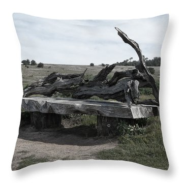 Cambria Driftwood Benches1 Throw Pillow