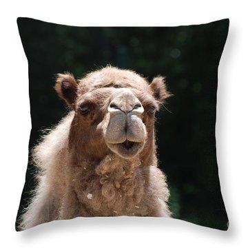 Camel Throw Pillow by DejaVu Designs