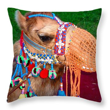 Throw Pillow featuring the photograph Camel Fashion by Julia Ivanovna Willhite