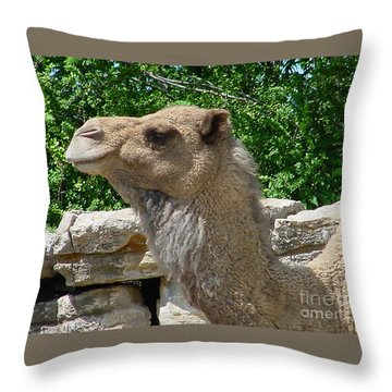 Camel Throw Pillow by Gary Gingrich Galleries