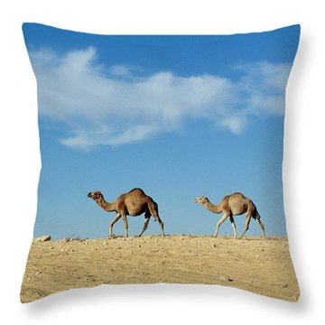 Camel Train Throw Pillow by Anonymous