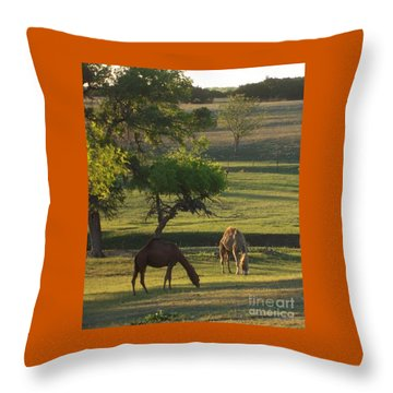 Camels Grazing Throw Pillow