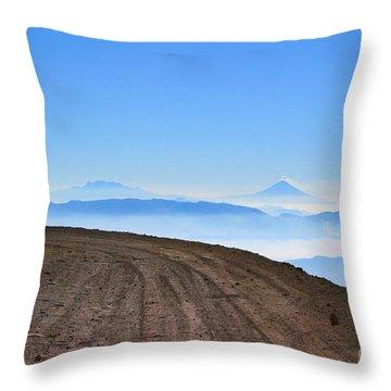 Camino En Volcan Nevado De Toluca Throw Pillow