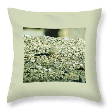 Throw Pillow featuring the photograph Arizona Camo Bird by Belinda Lee