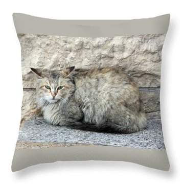 Camo Cat Throw Pillow