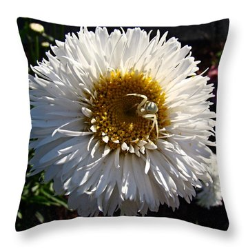 Throw Pillow featuring the photograph Camo Spider by Nick Kloepping