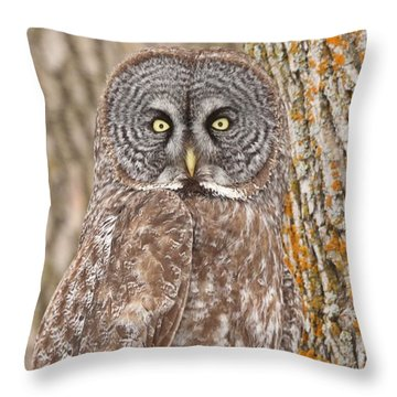 Throw Pillow featuring the photograph Camouflage-an Owl's Best Friend by Heather King