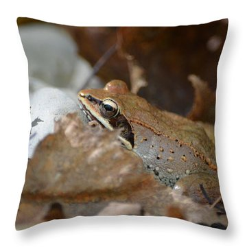 Camouflage Throw Pillow by James Petersen