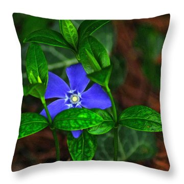 Camouflage Throw Pillow by Frozen in Time Fine Art Photography