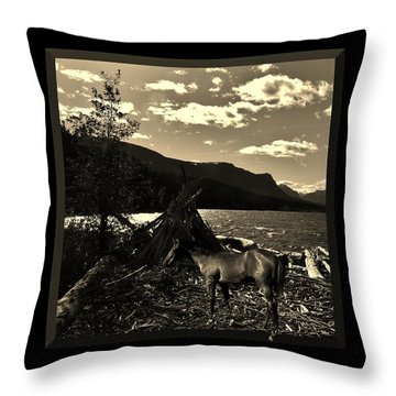 Camp Site Throw Pillow