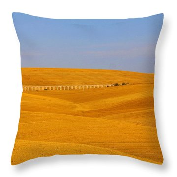 Tarquinia Landscape Campaign With Aqueduct And House Throw Pillow