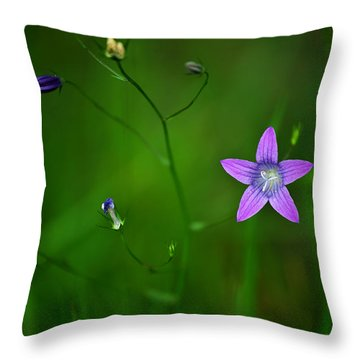 Campanula Patula Throw Pillow