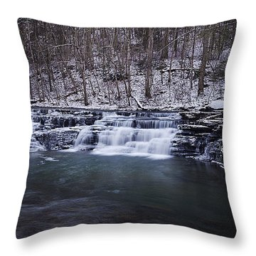 Campbell Falls Throw Pillow by Melissa Petrey