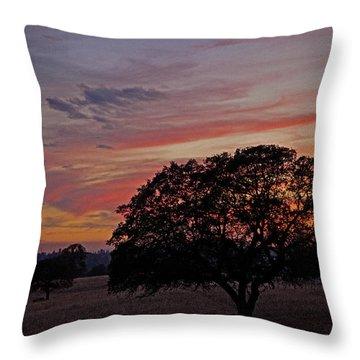 Campo Sunset Throw Pillow