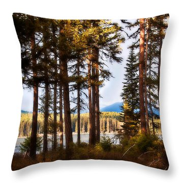 Campsite Dreams Throw Pillow by Janie Johnson