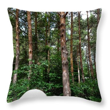Campsite Near Holland State Park Throw Pillow