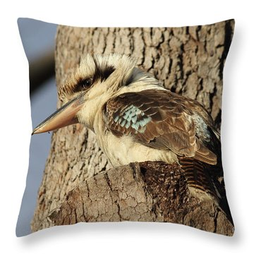 Can Anybody See Me? Throw Pillow