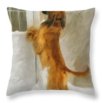 Can I Come In Now? Throw Pillow