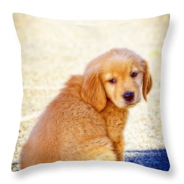Can I Play Too Throw Pillow