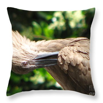 Throw Pillow featuring the photograph Can You Do This by Greg Patzer