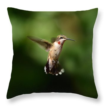 Can You See My Red Feathers Throw Pillow