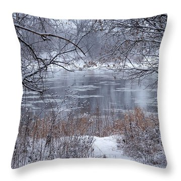 Canada Geese In The Winter II Throw Pillow
