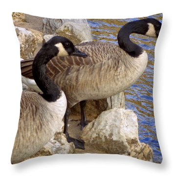 Throw Pillow featuring the photograph Canada Geese by Joseph Skompski