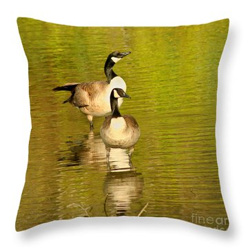 Throw Pillow featuring the photograph Canada Geese Pair by Bob and Jan Shriner