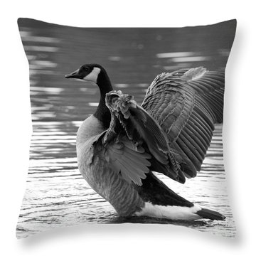 Canada Goose Black And White Throw Pillow