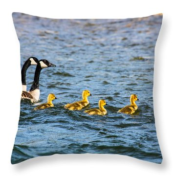 Canadian Geese And Goslings Throw Pillow by Omaste Witkowski