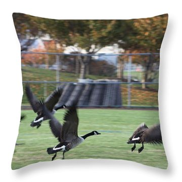 Canadian Geese Taking Flight Throw Pillow by Robert Banach